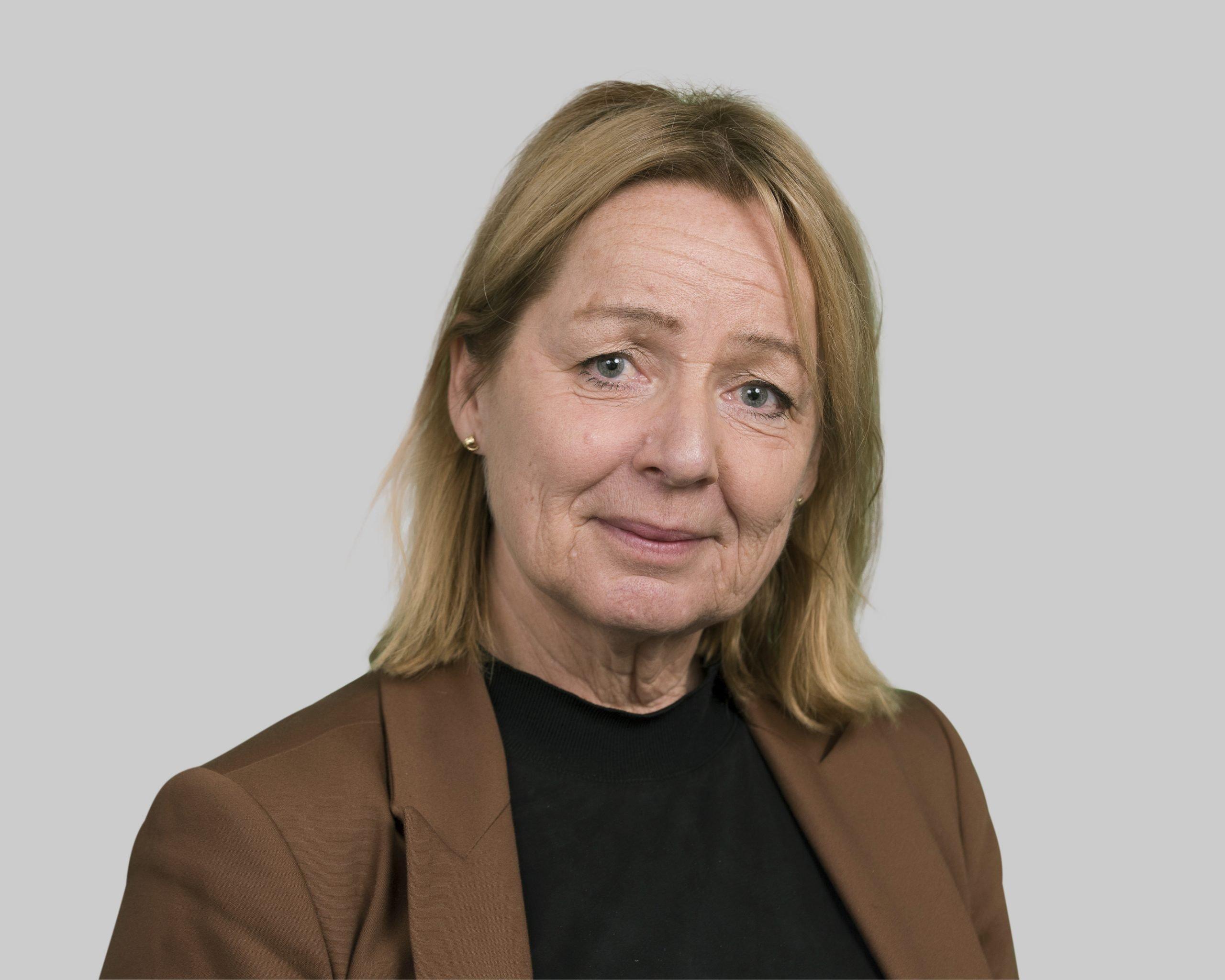 Birgitta Fahlkvist grundade av Vicapta